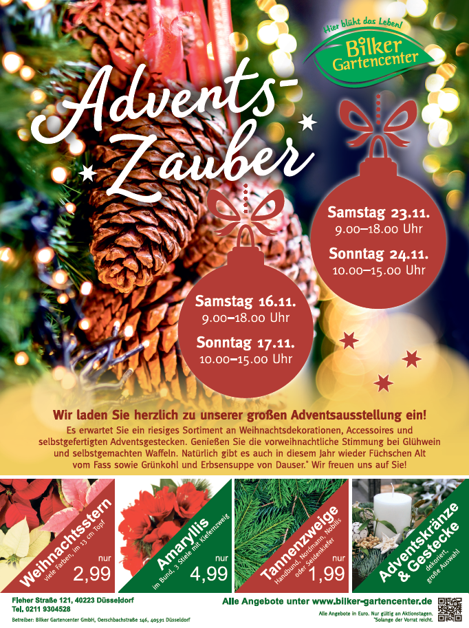Advent-2019-187x250.png